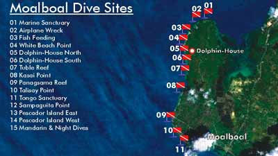 Moalboal Diving Site