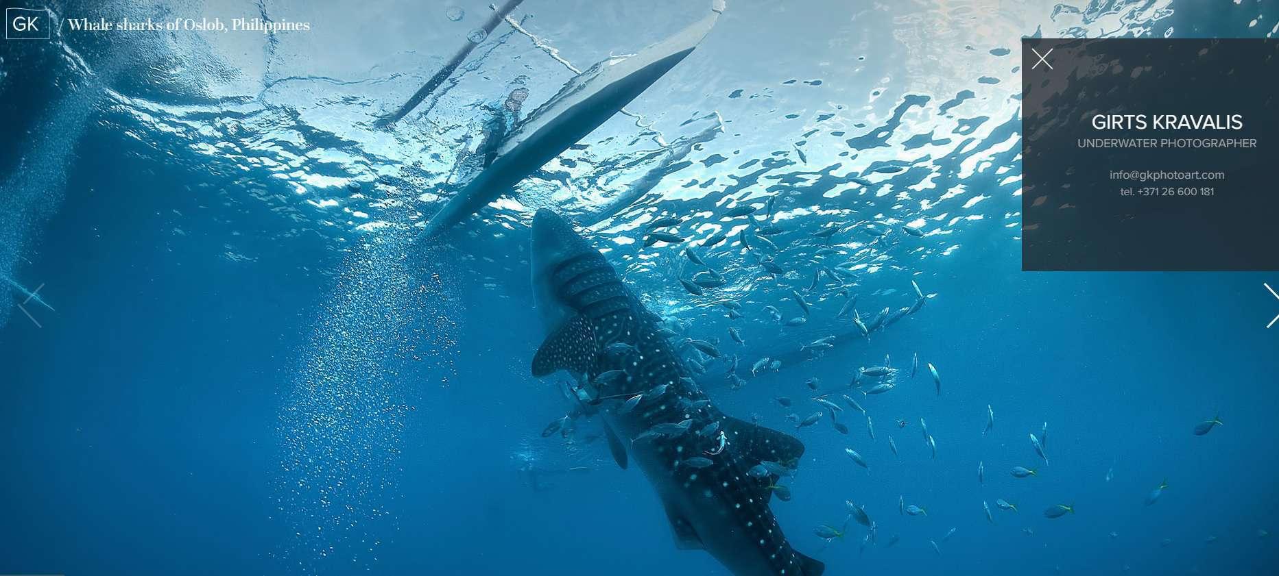 Whaleshark by GK