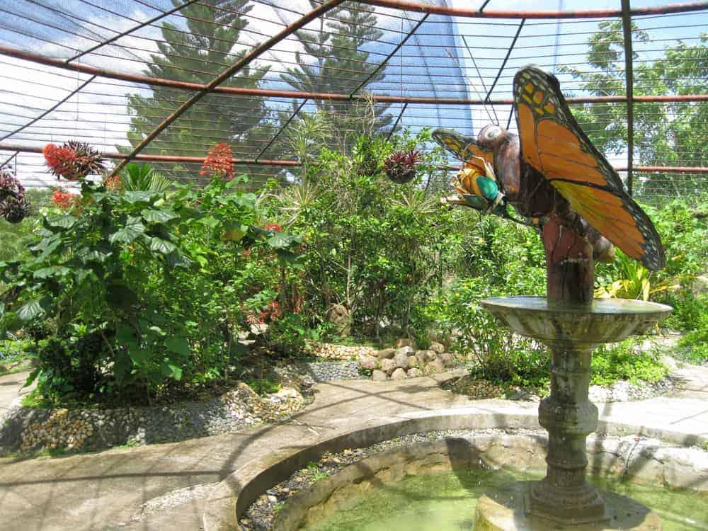 Butterfly sanctuary in Bilar town